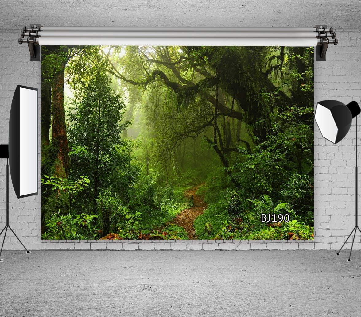 LB Green Forest - Fondo de Vinilo para Estudio fotográfico, 210 x 150 cm, diseño de árboles de Bosque Virgen, Color Verde: Amazon.es: Electrónica
