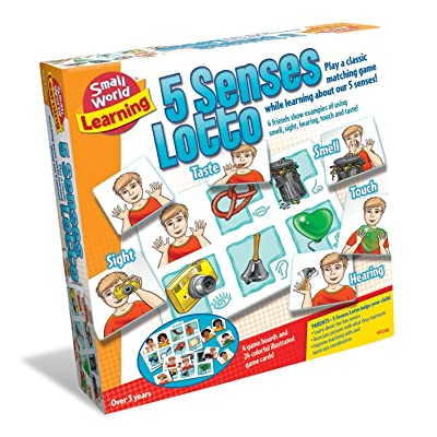 Small World Toys Learning - 5 Senses Lotto Matching Game: Toys & Games