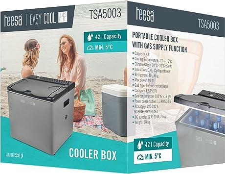 Teesa Tsa5003 Tragbare Kühlbox Mit Gasbetrieb 42 Liter Auto