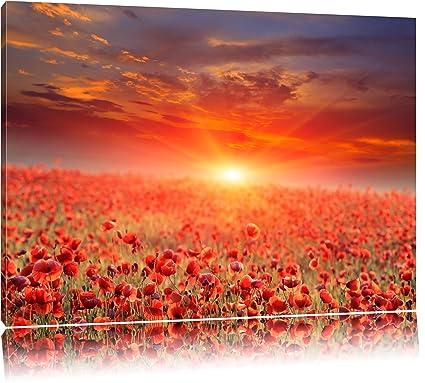 A0 susnet CANVAS landscape art painting print great color Australia field