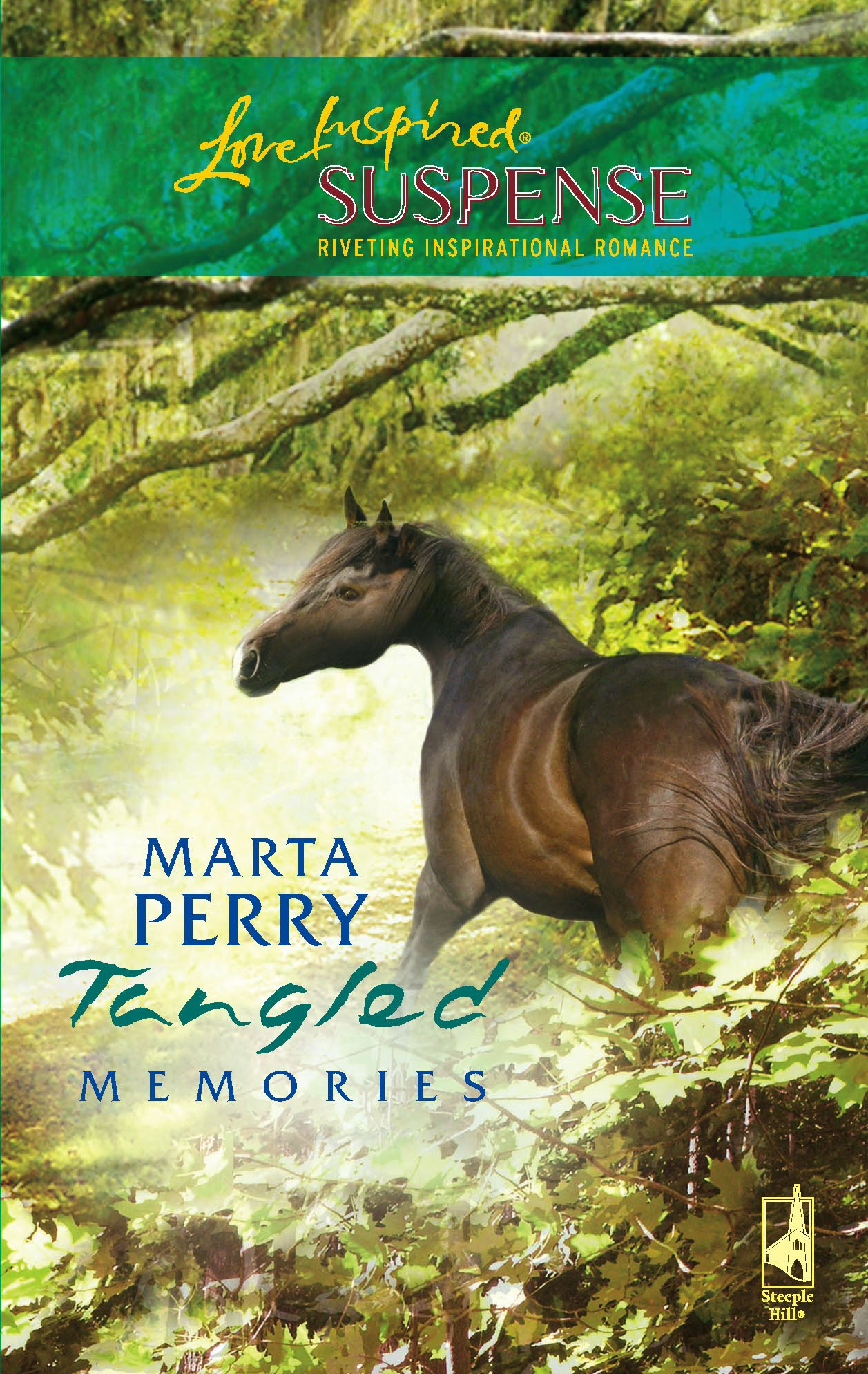 Tangled Memories (Lowcountry Suspense Series #2) (Steeple Hill Love Inspired Suspense #28) ebook
