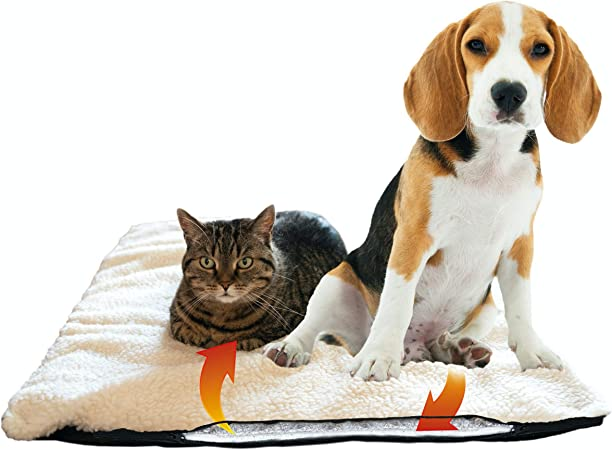 Tappetino TAPPETO protezione già riferimento già coperta cani coperta Auto Tappetino soffitto