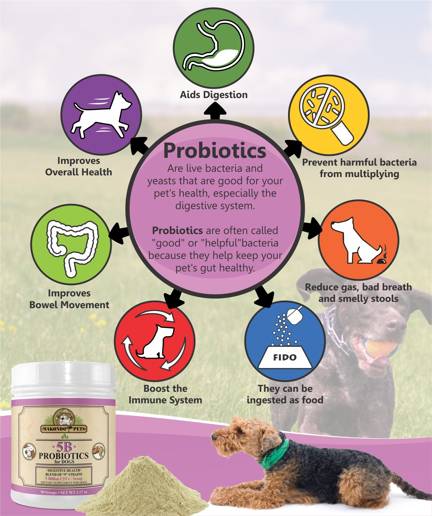 Makondo Pets Probiotics for Dogs & Puppies – Flavored, Made in USA, Extra Strength 9 Species Digestive Support Tummy Relief Enzyme Powder, 5 Billion CFUs per Scoop – 90 Scoops per Tub, 3.17 oz by Makondo Pets (Image #4)
