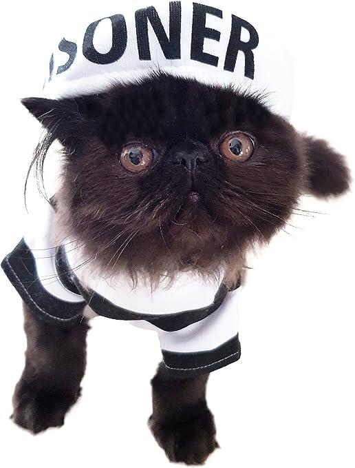 Divertido disfraz de perro y gato negro y blanco a rayas para ...
