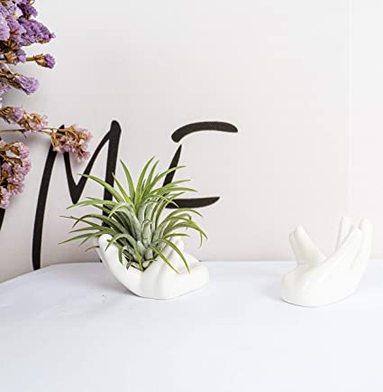 Porcelain Ceramic Air Plant Tillandsia Holder Flower Office Desk Decor Chic t US