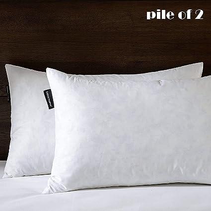 Amazon 40X40 Oblong Pillow Insert 40% Feather 40% Down 40 Classy Oblong Pillow Inserts