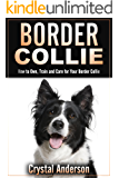 Border Collie: How to Own, Train and Care for Your Border Collie