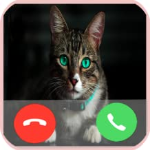 Blue Eyes Cat Call