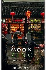 MOON ZINC Kindle Edition