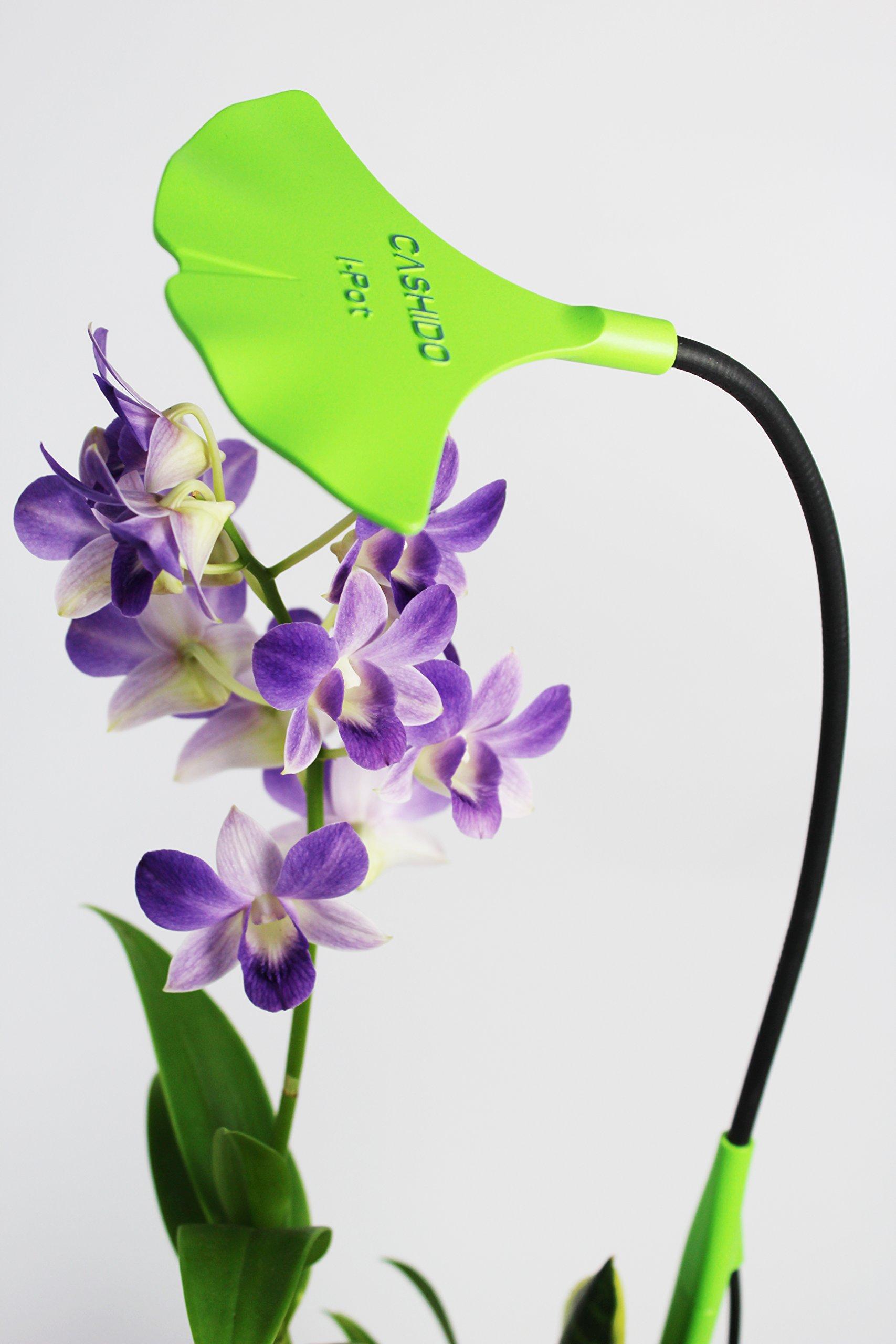 I-Pot S1 LED Plant Grow Light (Green) - Novelty Mood Lamp, Desk Lamp, Office Lighting, Hobby Recreational Use