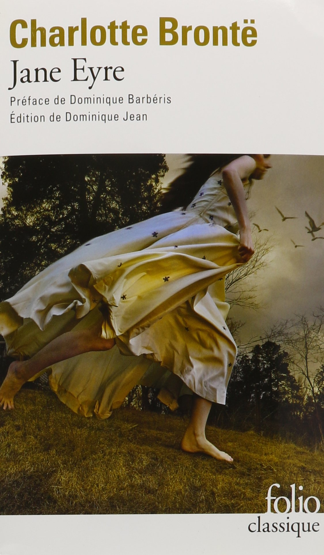 Jane Eyre Audiobook PACK [Book + 3 CD's ; extracts only] (French Edition) PDF