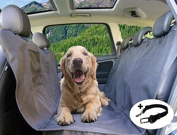 Picoon Hundedecke Auto Autoschondecke Für Hunde In Schwarz Wasserdicht Mit Sicherheitsgurt Für Alle Automodelle 160cm X 143cm Rücksitz Rückbank Schondecke Schutzdecke Sitzschutz Kofferraumschutz Haustier