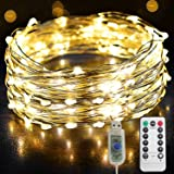 66ft 100LED Copper Wire USB Powered String Fairy Lights, Twinkle Waterproof Lights Remoted and Powered with 8 Modes for Room