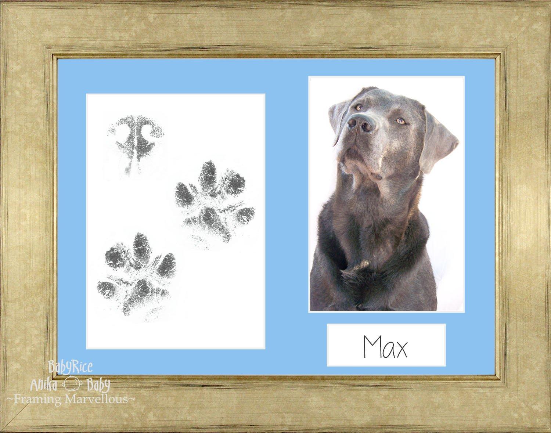 Amazon.de: BabyRice Pet Paw Print Kit Champagner Foto Bild Display ...
