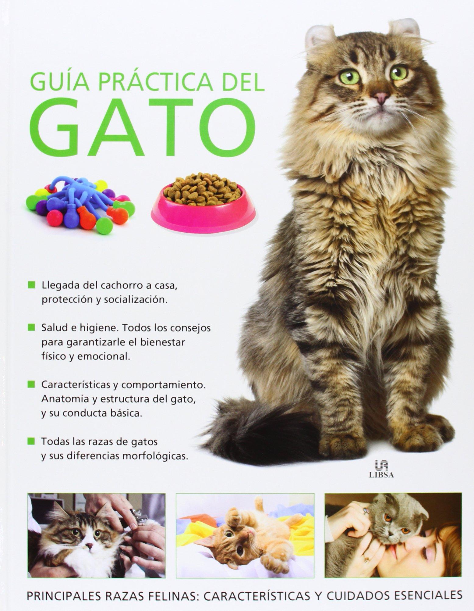Guía Practica Del Gato (Guía Práctica): Amazon.es: Bessant, Claire ...
