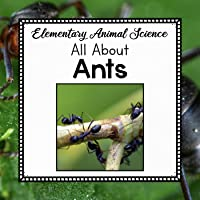 All About Ants - Elementary Animal Science Unit