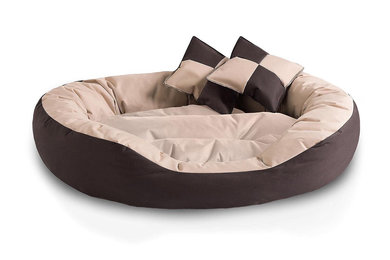 BedDog 4 en 1 SABA beige/marron XL aprox. 85x70cm colchón para perro, 7 colores, cama para perro, sofá para perro, cesta para perro: Amazon.es: Coche y moto