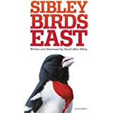 The Sibley Field Guide to Birds of Eastern North America: Second Edition (Sibley Guides)