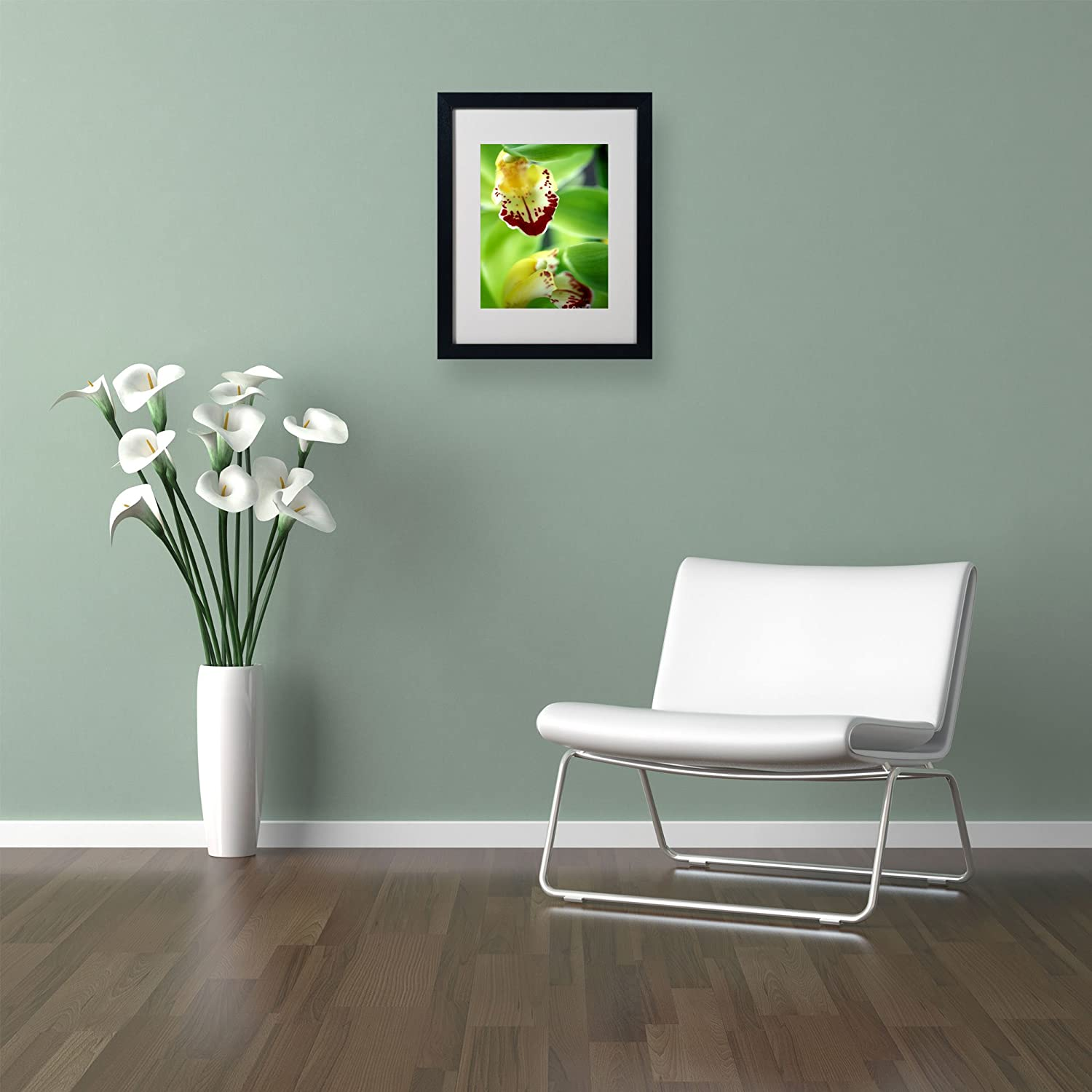 Amazon Com Cymbidium Seafoam Emerald Orchid Matted Framed Art By Kathy Yates With Black Frame 11 By 14 Inch Framed Prints Posters Prints