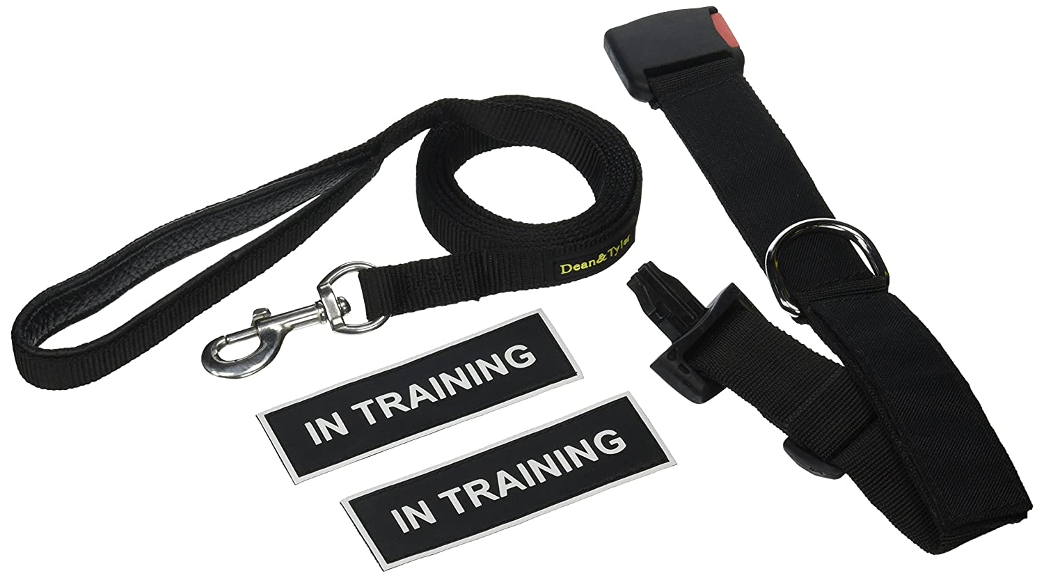Dean & Tyler in Training Patch Small Dog Collar with 6-Feet Padded Puppy Leash, Black