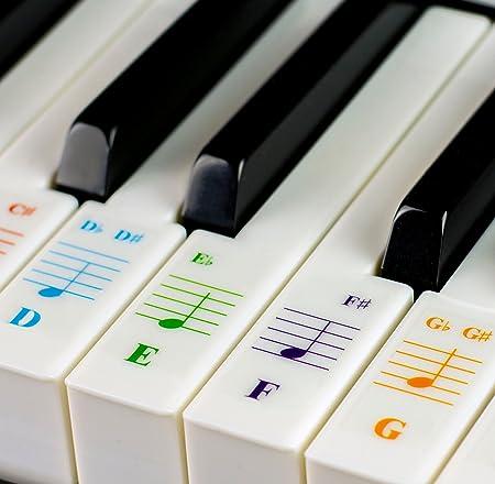 Pegatinas para teclados 49/61/76/88 - Transparentes y extraíbles, con libro electrónico de piano gratis