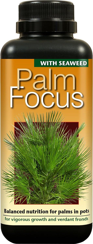 Growth Technology Ltd GTPAF1L Palm Focus Concentrated Liquid Fertiliser 1 Litre - Black 05-210-230