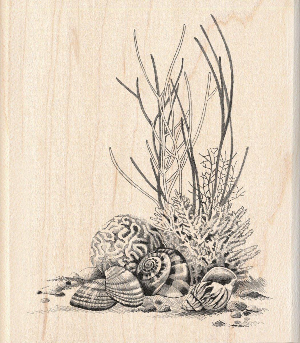 Inkadinkado Coral Wood Stamp