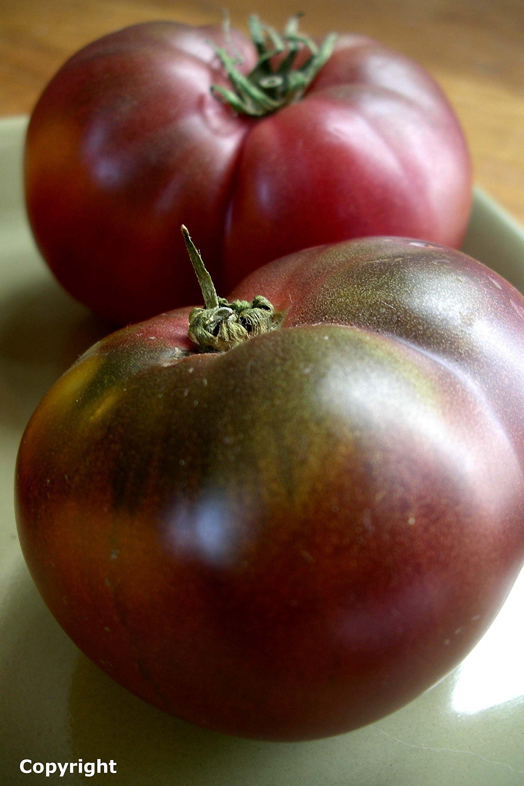 Cherokee Purple Heirloom Tomato Seeds- 75+ Seeds for 2021 by Ohio Heirloom Seeds