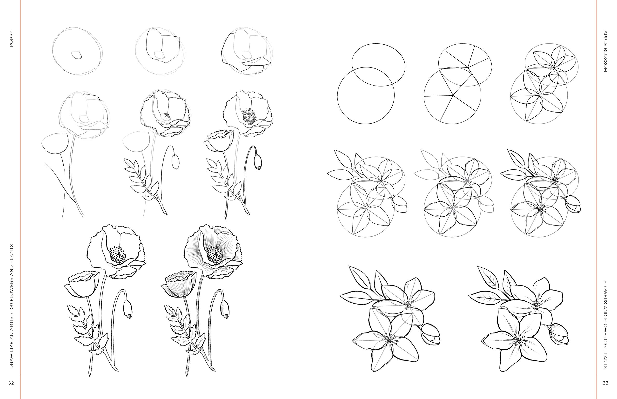 Amazon Com Draw Like An Artist 100 Flowers And Plants Step By Step Realistic Line Drawing A Sourcebook For Aspiring Artists And Designers 9781631597558 Washburn Ms Melissa Books