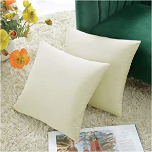 COMFORTLAND 2 Pack Decorative Throw Pillow Covers, Square Soft Luxury Velvet Cushion Covers, 16x16 Solid Pillowcase Set for Sofa Couch Bed Chair Car Home Decor, Off White