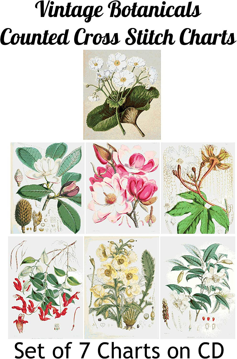 14 and 18 Count PDFs on CD for Computer Set of 7 Vintage Botanical Art Images Printable Counted Cross Stitch Patterns