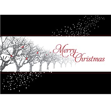 Amazon christmas holiday greeting card h1125 wish friends or christmas holiday greeting card h1125 wish friends or associates quotpeace hope jay m4hsunfo