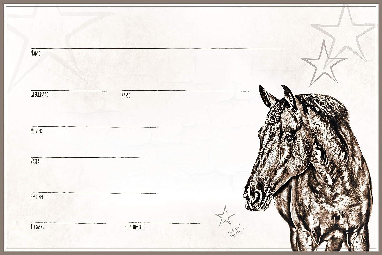20x30cm Alu Holsteiner etc Hannoveraner Boxenschild Stallschild Stalltafel Namensschild Pferd Warmblut