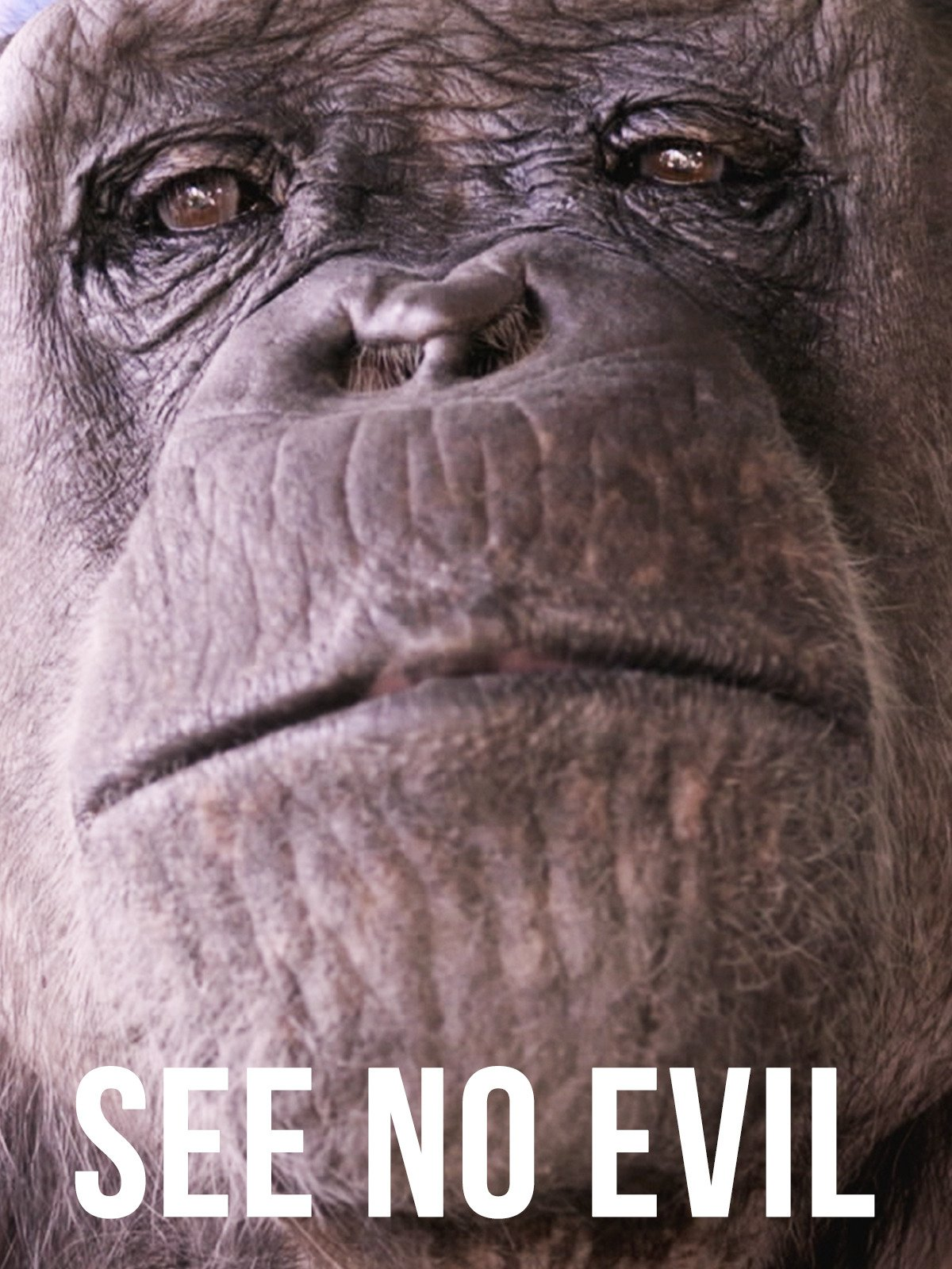 See No Evil on Amazon Prime Video UK