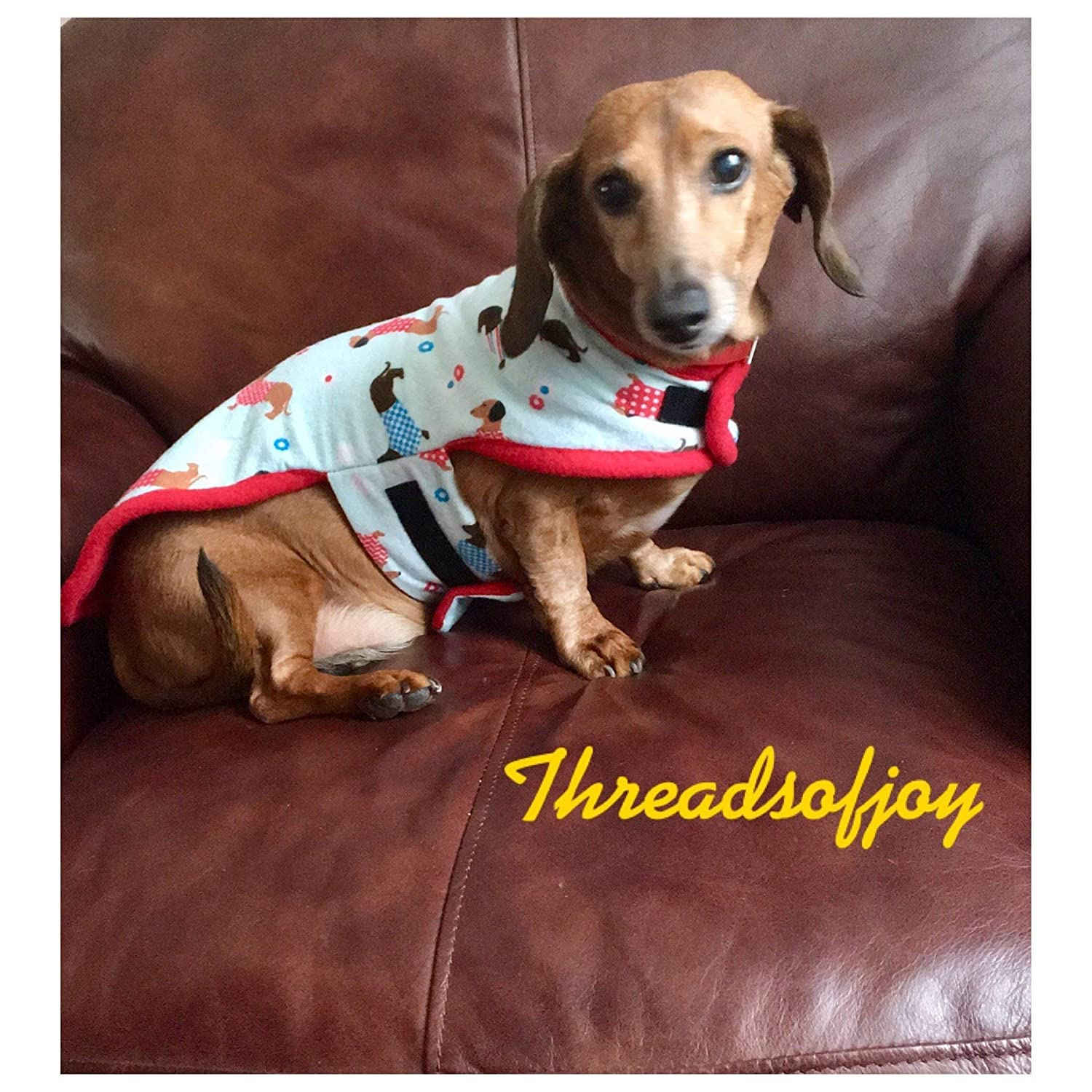Pet Supplies Pet Accessories Dachshund Dog Coat Small Dog Clothing Dachshund Gifts Dachshund Sweater