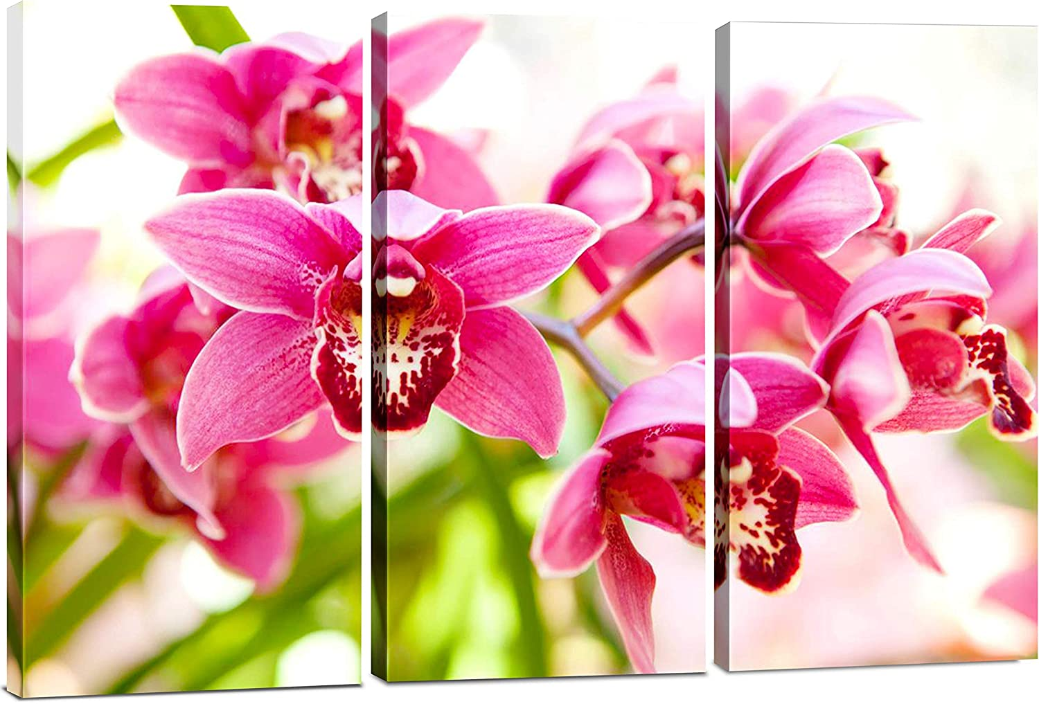 Amazon Com Pink Flower Wall Art Simple 3 Piece Orchid Wall Decor Minimalist Floral Prints Small Botanical Pictures Framed Tropical Painting Print Set Canvas Wall Art For Bedroom Bathroom Office Posters