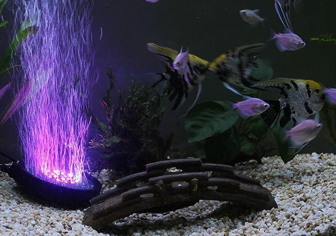 TSSS 12 LEDs para Acuario Aire Piedra burbuja de disco luces bajo el agua multicolor LED que cambia luces: Amazon.es: Bricolaje y herramientas