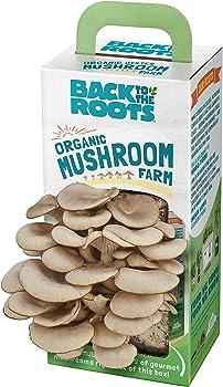 Back to the Roots Organic Mushroom Farm Grow Kit