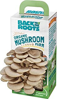 Back to the Roots Organic Mushroom Farm Grow Kit, Harvest Gourmet Oyster Mushrooms In 10 days, Top Gardening Gift, Holiday G