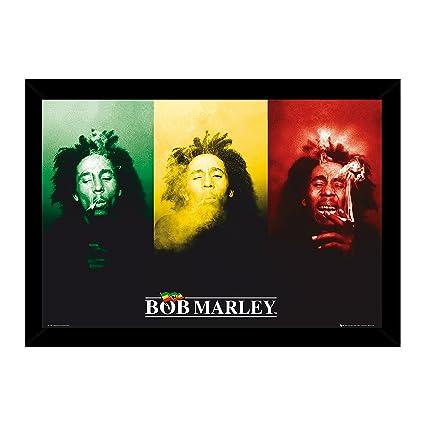 Amazon.com: Bob Marley - Smoke Poster (36x24) with Traditional Black ...