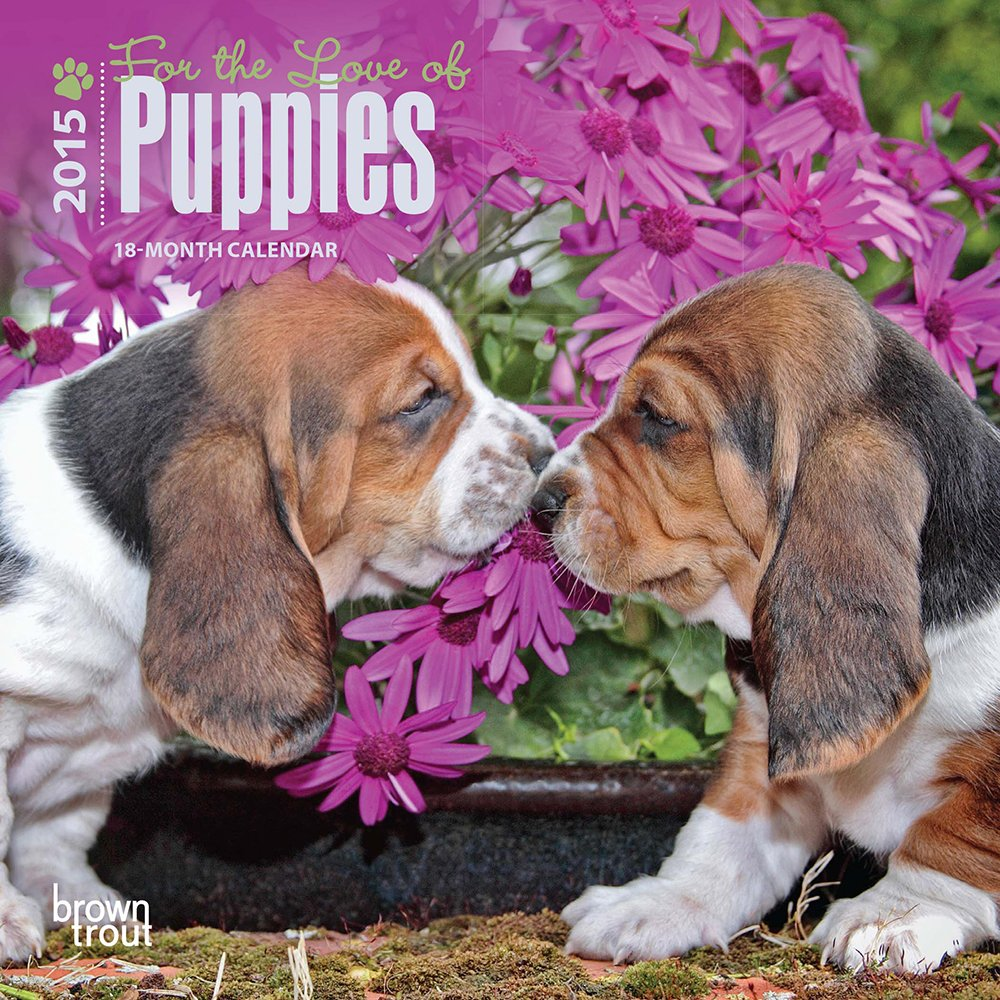 Download For the Love of Puppies 2015 Mini 7x7 pdf epub