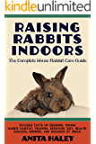Raising Rabbits Indoors: The Complete House Rabbit Care Guide