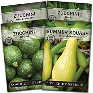 Sow Right Seeds - Zucchini Squash Seed Collection for Planting - Black Beauty, Grey, Round Zucchinis and Yellow Straightneck Summer Squash, Non-GMO Heirloom Seeds to Plant a Home Vegetable Garden
