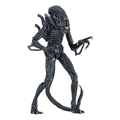 "NECA - Alien- 7"" Scale Action Figures - Ultimate Warrior - (1986) Blue Alien: Toys & Games"