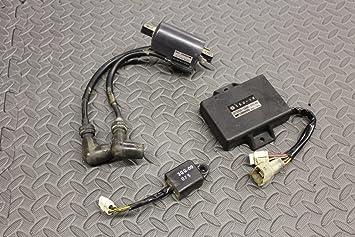REGULATOR PACKAGE COIL 1997-2006 Yamaha Banshee electrical 3GG-10 CDI BOX