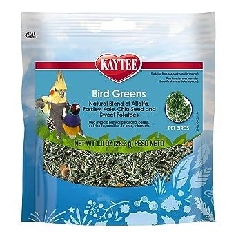 Kaytee Products C 529082 - Tratamiento de pájaros para Todo Tipo de pájaros (Porcelana)