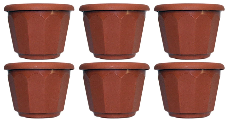 Set of 6 Black Duck Brand Brown Plastic Round 5 x3.75 Scallop Design Flower Pot Planter 6, Brown
