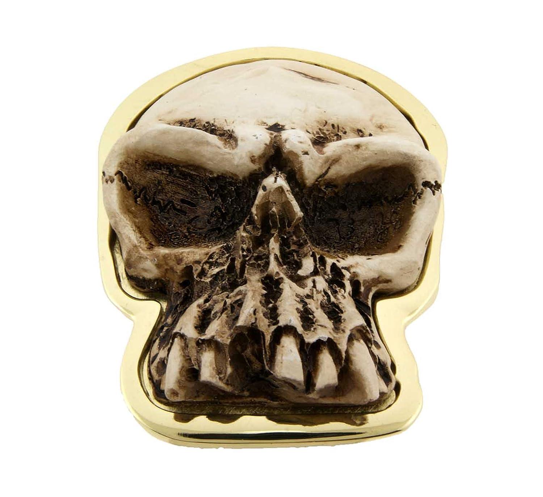 Skull With A Frown Anatomy Bone Likemissing Teeth Lower Jawbone