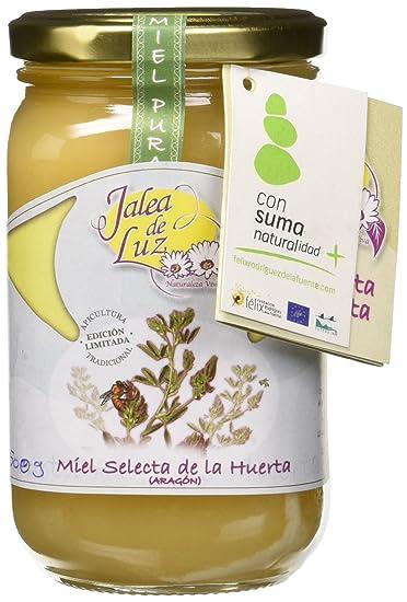 Jalea de Luz Miel Cruda Pura de Alfalfa - 500 gr.