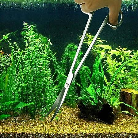 Aquariums & Tanks Fish Tank Aquarium Plant Seeds Aquatic Water Grass Foreground Plant Easy Plants Comfortable Feel